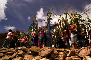 Maize festival in Chietepec el Grande, Montaña de Guerrero, Mexico. (Photo: Prometeo Lucero/CDHM Tlachinollan)