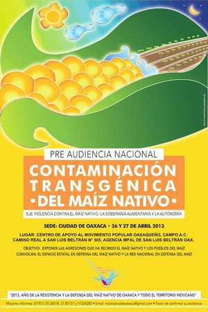 Poster for the prehearing on contamination of transgenic maize in San Luis Beltrán, Oaxaca, April 2013.