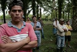 Peasants from the Bajo Aguán valley, Honduras, which is witnessing an alarming situation of violence and repression against peasant communities. On April 17, 2012, the International Day of Peasant Struggle, Honduran peasants started massive land occupations, with about 3000 farm families occupying more than 12,000 ha in at least six departments.  (Photo: CC HondurasBlog via Flickr)