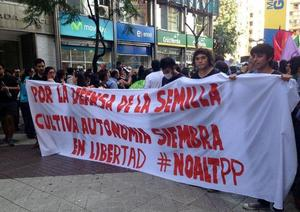 "In Chile, students, farmers and consumers have successfully prevented the senate from adopting a ""Monsanto Law"" that would require the country to join UPOV 1991—which the TPP would make obligatory. (Photo: Biodiversidadla.org)"