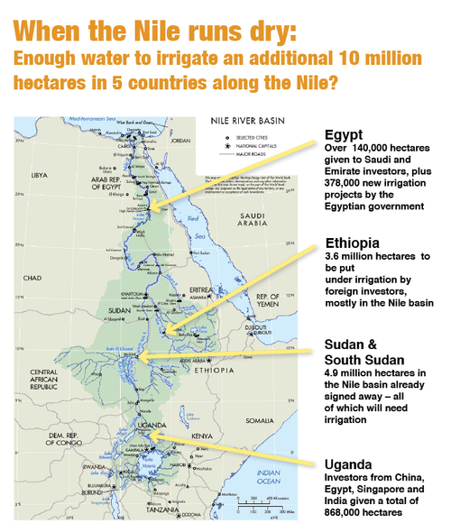 FAO puts the irrigation potential of the entire Nile basin at 8 million hectares maximum