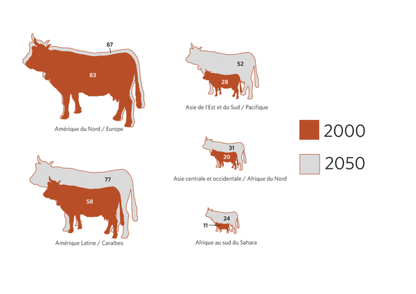 *Comprend la viande de boeuf, le porc, la volaille et le mouton. Adaptation de : IFPRI, « How many kilograms per person », Insights, Vol. 2, Issue 3, 2012, p. 23, http://ebrary.ifpri.org/cdm/ref/collection/p15738coll2/id/127219