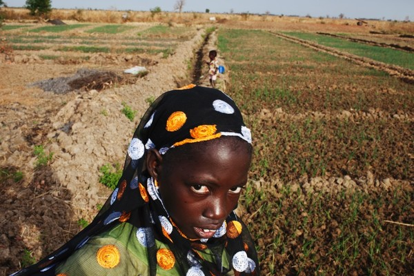 Farmer Djeneba Diarra on her farm in Heremakono, Mali (Photo: Joe Penney/Reuters)
