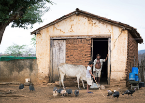Small farm with animals in Ceará, Brazil. Small-scale livestock production enhances family nutrition and food security. (Photo: fxp@gmx.de)