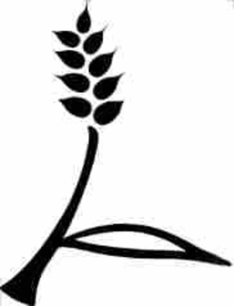 GRAIN | Glossary No  2: Agricultural Research: What's in a name