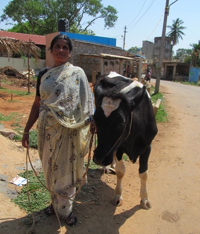 Defending people's milk in India-image