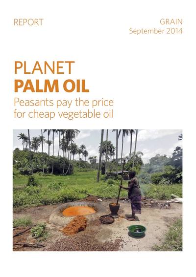 Land grabs for oil palm plantations in Africa and Papua-image