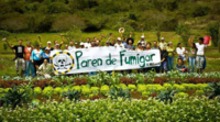 "Argentina: New ""national"" GMOs. Resistance multiplies.-image"