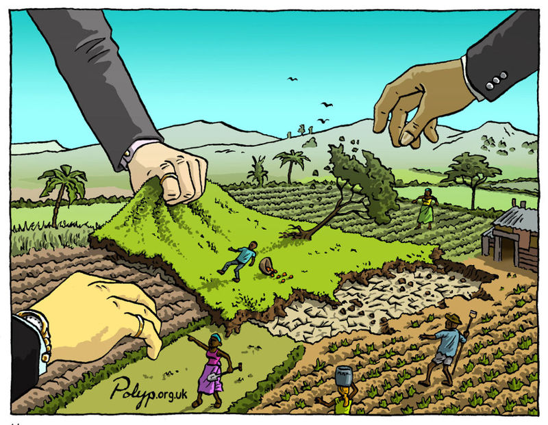 GRAIN | Seized: The 2008 landgrab for food and financial