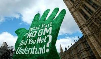 Twelve reasons for Africa to reject GM crops-image