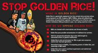 Asia farmers' network resounds strong call to Stop Golden Rice!-image