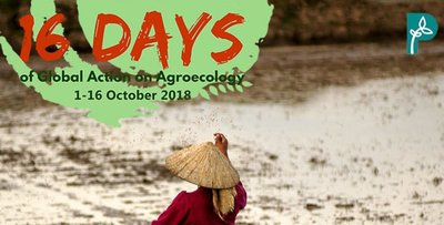 World Hunger Day: #ZeroHunger is possible with food sovereignty, agroecology and people's right to development-image