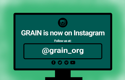Find GRAIN on Instagram!-image
