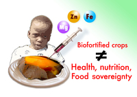 What's wrong with biofortified crops? The fight for genuine solutions to malnutrition is on-image