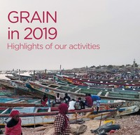 GRAIN's 2019 activity report-image