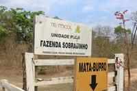 Harvard's land grabs in Brazil are a disaster for communities and a warning to speculators-image