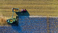 Barbarians at the barn: private equity sinks its teeth into agriculture-image